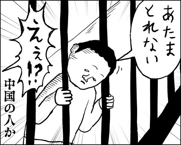 image019