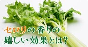 01_serori_1200x640