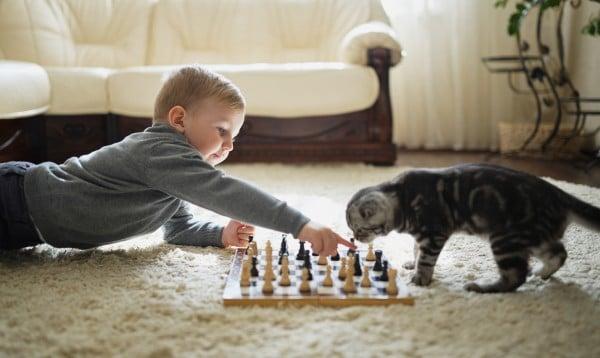 little boy plays chess lying on floor