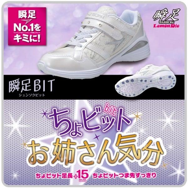 syunsoku_TYPER_bit_catalog_ol